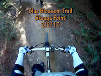 Blue Blossom Trail, Skeggs Point, 2/2/13