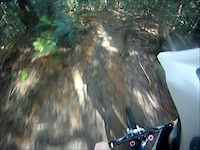 Possums Downhill Track
