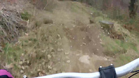 Mountain ash dh track