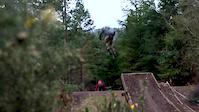 Tavistock gorse jumps