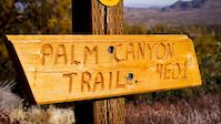 Palm Canyon Trail - Mixed Up 01-12-13