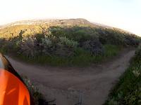 Lynx Trail