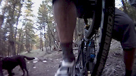 Campbell Mt; Lower DH with reverse cam