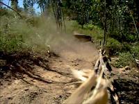 Caldas Freeride Track - Moreira