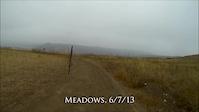 Meadows 6/7/13