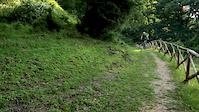 Trails near home