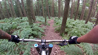 The Man Up Gap Esholt Woods