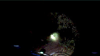 Caldeira Velha by Night