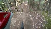 Hartland Bike Park - Jelly, Lumpy, Daddy