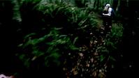 2013-09-07 Graceland DCent