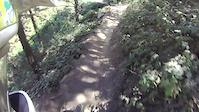 La pinilla Ardillas + wood park