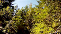 2013-04-04 Graceland