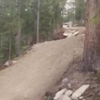 trestle downhill
