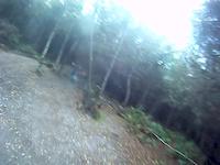 Doubling Babymaker - Swinley Forest