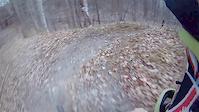 Dagmar root section clip #2
