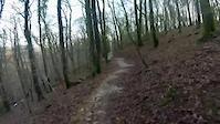 Plymbridge Blue Trail descents