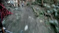 Training Run DHI