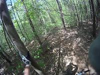 Carpet Trail  USNWC