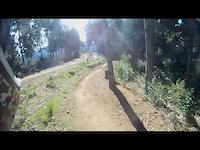 FourForty Mountainbike Park, NZ. Gumdiggers Trail.