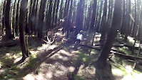 Woodlot- Cabin to PBR