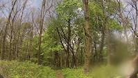 ridinga new trail