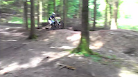 Forest of Dean Mr rooty