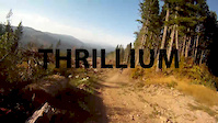 Thrillium dry and fast 2013