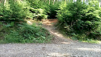 New track cann woods