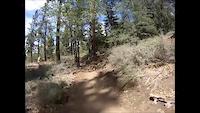 Pineknot Trail