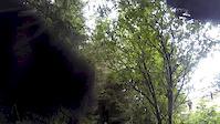 Descend Hamsterly Bike Park