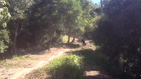 hitting up whoops at UCI downhill world cup track