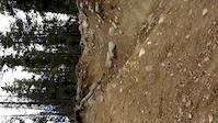 Im Going Downhill in Rocky Mountain Jasper Alberta