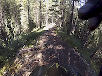 Long Road to Ruin Trail in Canmore Nordic Centre