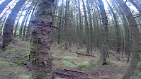Short clip at Davagh forest trails
