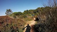 Sintra - Trilho da Viúva - 2014-09-28