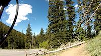 Scotts Bypass Trail