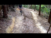 THTC - Mad Cow Uphill Track