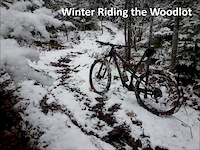 Winter Riding the Woodlot