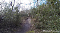 Winter Riding Danbury Common Essex