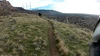 Pok Trail POV