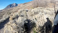 Climb up to North Ogden Divide