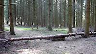 Schëtterhaard Trail 3 - Jump