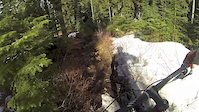 Microclimate trail Whistler BC