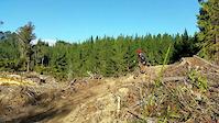 New 'Old Exit' Trail, Rotorua