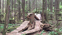 Stump drop