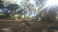 'the liar ' singletrack