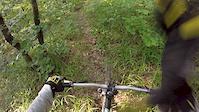 WDP Trail KK