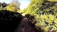 Upper Severed D Mountain Bike Trail Mount...