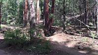 Shultz Creek drop then jump