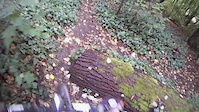 SFU: Gravity Bowl Trail